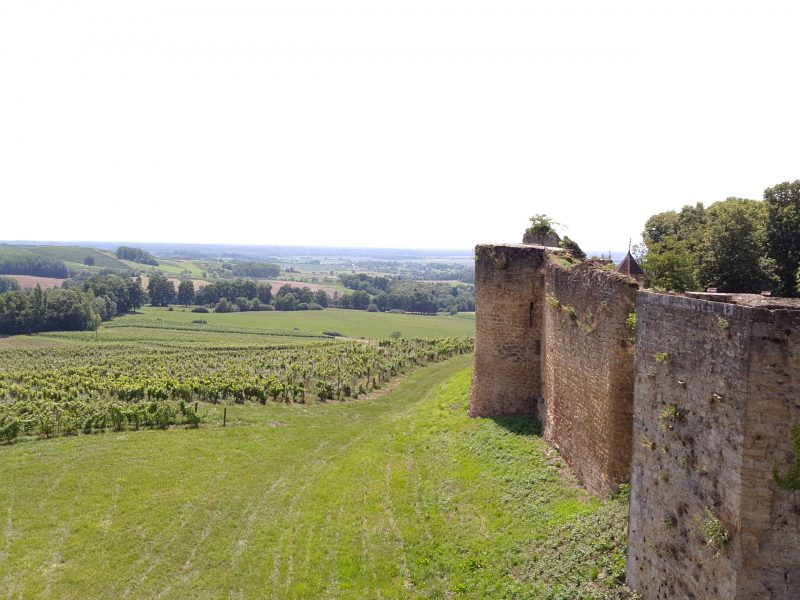 vin Jura Chateau Arlay