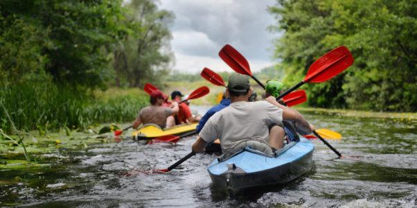 Activité canoë kayak en Alsace pour l'EVJG d'un ami