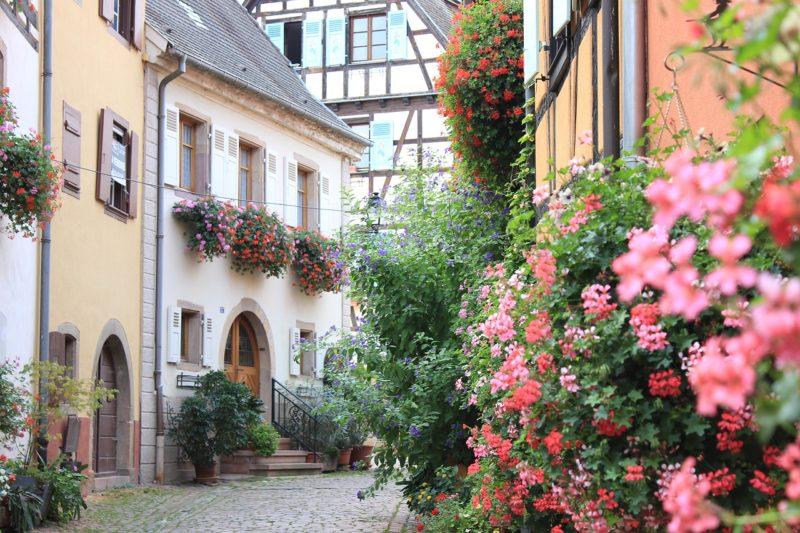 Route des Vins Eguisheim