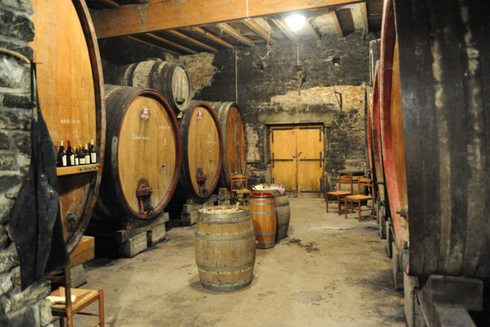 frédéric lornet vins jura dégustation